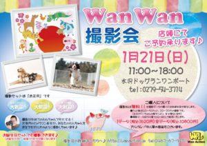 1月21日水沢ドッグラン-1024x722